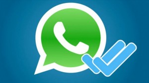 Eliminar el doble check en WhatsApp