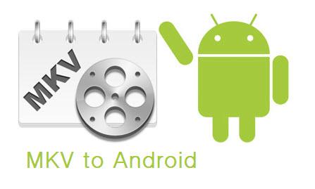 Reproducir un archivo MKV en android