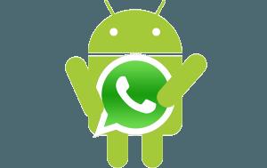 Borrar imágenes, audios y videos de WhatsApp de forma definitiva