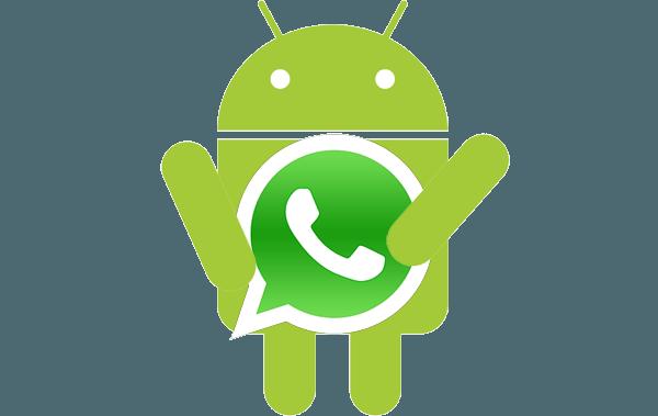 respaldar y restaurar tus conversaciones de WhatsApp
